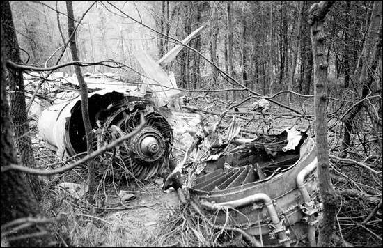 A destroyed engine on the forest floor